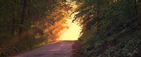 sunlight-166733_blog